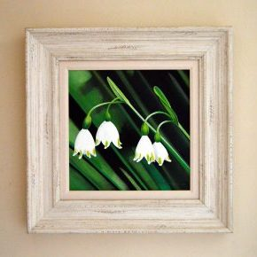 Snow Drops Original acrylic frame size 48cm x 48cm £395
