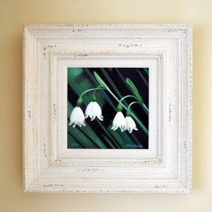 Snow Drops acrylic mixde media print frame size 38cm x 38cm £125